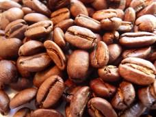 Kawa arabika Kalossi Indonezja świeżo palona - ziarnista