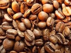 Kawa arabika Dijmah Etiopia świeżo palona - ziarnista
