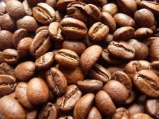 kawa w ziarnie, świeżo palona, Caffe Giorno - dla firm - 5kg