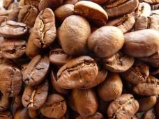Kawa arabika Maragogype Meksyk świeżo palona - ziarnista