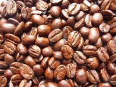 Kawa arabika Panama świeżo palona - ziarnista
