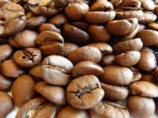 Kawa arabika Santos Brazylia świeżo palona - ziarnista