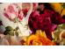 "Ashdene Kubek porcelanowy 16332 ""róża henri matisse stripe"""