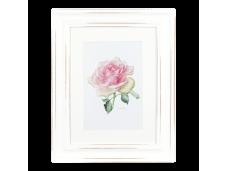 "Ashdene Obrazek w ramce 30013 ""róża enchanted pink"""