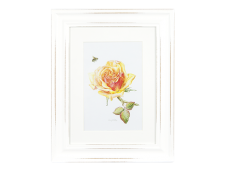 "Ashdene Obrazek w ramce 30014 ""róża tango yellow"""