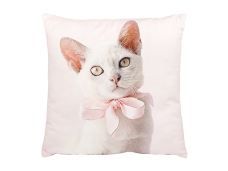 Ashdene Poduszka mała Kitten Pink 46275