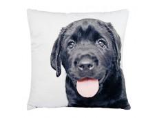 Ashdene Poduszka mała Lab Puppy 46276