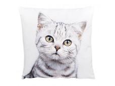Ashdene Poduszka mała Innocent Kitten 46277