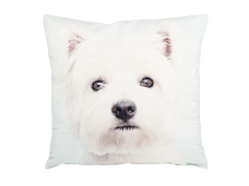 Ashdene Poduszka mała White Terrier 46278