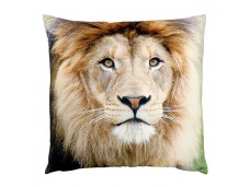 Ashdene Poduszka duża Lion 46288